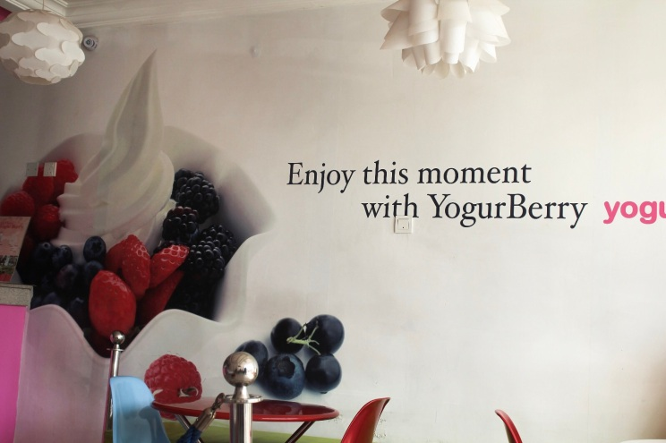 yogurberry-froyo-frozen-yoghurt-abuja-food-diary